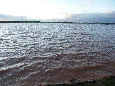 Laguna formada por el desbordamiento del río Azuer