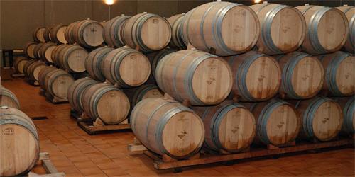 Sala de barricas de Vinícola de Tomelloso