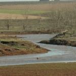 Polémica en Daimiel por la recarga artificial del acuífero 23 para Las Tablas
