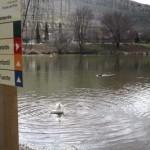 Puertollano recupera el parque de las Pocitas con una inversión de 303.210 euros