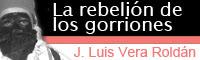 José Luis Vera Roldán