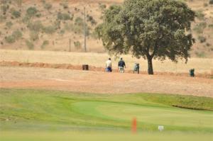 Ecologistas en Acción exige el cierre inmediato del campo de golf de Torrenueva