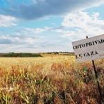 Proanimal CLM solicita al Defensor del Pueblo la interposición de un recurso de inconstitucionalidad a la Ley 2/2018 por la que se modifica la Ley de Caza de Castilla-La Mancha