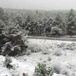 El Gobierno de Castilla-La Mancha planifica la actuación ante las emergencias invernales