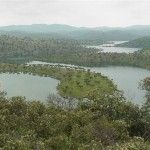 CSI·F pide a la Junta que aclare si venderá montes públicos a empresarios forestales