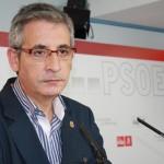 Martín (PSOE) pide que la poda de la vid tenga la misma consideración para la generación de biomasa que la de los cultivos forestales