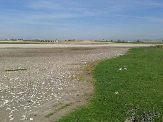 Primer afloramiento. Al fondo se aprecia la humedad donde ha surgido el agua desde el acuífero. Foto: Tablasdedaimiel.com