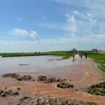 Las lluvias han afectado al 2 por ciento de la superficie agraria de Castilla-La Mancha