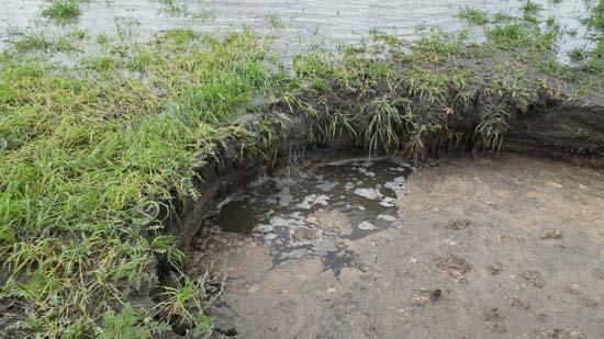 Hundimiento junto al Molino de la Parrilla, Actúa como sumidero y durante el tiempo de observación no subió de nivel. 7 de Abril.