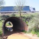 Puertollano: Un lector denuncia el estado de un puente idéntico al que provocó los accidentes mortales en Fuencaliente
