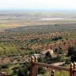 Aumenta el flujo de turistas de Madrid, Levante, Cataluña y Castilla-La Mancha a Villarrubia de los Ojos