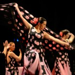 """Baile, guitarra y el cante se dieron cita en Argamasilla de Alba en el I Festival Flamenco """"Primavera del Cante"""" con el apoyo de numeroso público"""