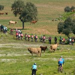 La segunda ruta en bici de montaña de la Diputación partió de Alcolea de Calatrava