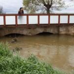 El arroyo Pellejero se desborda y anega parte del término municipal de Torralba de Calatrava: galería de fotos