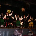 Daimiel celebra la XXV edición del Festival de Mayos