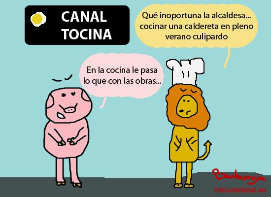 canaltocina