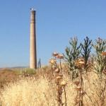 Puertollano: Un curioso nido de cigüeñas en la torre «desplomada» del Pozo de San Esteban