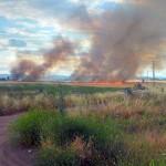 Incendio a 500 metros Ciudad Real: arden cinco hectáreas detrás del cementerio