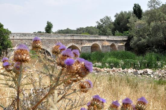 puentealarcos1