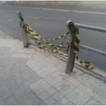 IU denuncia el mal estado de algunas zonas de Ciudad Real mientras el Ayuntamiento «invierte en destruir árboles»