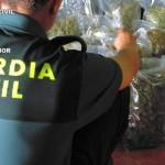 Manzanares: La Guardia Civil detiene a una persona que transportaba más de cuatro kilos de marihuana