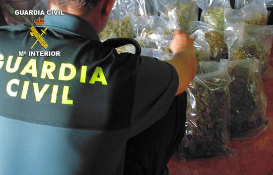 manzanares_marihuana