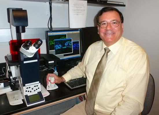 Dr. Julian G. Cambronero_Microscope