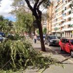 Ciudad Real se anda por las ramas