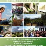 Manzanares: Ecovalia convoca un curso de parámetros de calidad y producción de aceite de oliva ecológico