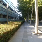 La Universidad de Castilla-La Mancha busca 30 profesores