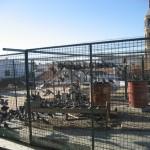 El Ayuntamiento de Valdepeñas utiliza jaulas y aves rapaces para controlar la población de palomas