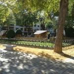 Ciudad Real: IU cree que Rosa Romero inaugura los Jardines del Prado antes de finalizar la obra «para desviar la atención de la zona azul»