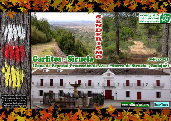 garlitos-siruela - 01