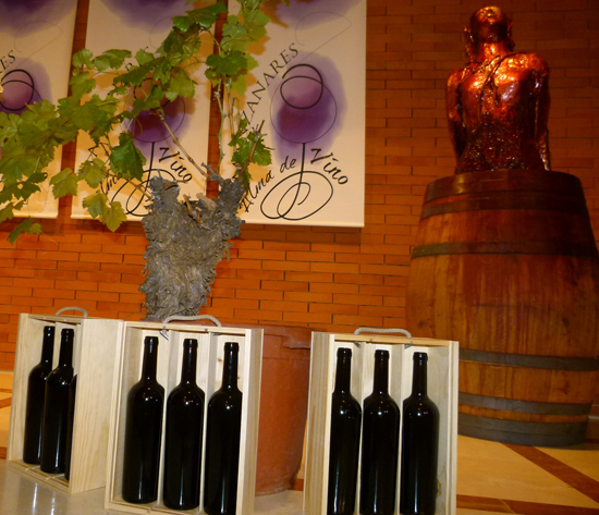 manzanares_cata_alma-del-vino