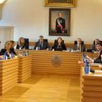 Vídeo: Pleno ordinario del mes de noviembre del Ayuntamiento de Ciudad Real