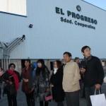 Villarrubia de los Ojos: La Cooperativa El Progreso comienza a recoger aceituna esta próxima semana en una campaña que puede ser de récord