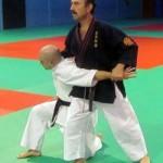Ciudad Real: El profesor del Shotokan Javier Fernández-Bravo imparte un Curso Nacional de Tai-Jitsu en Madrid