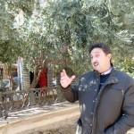 Daimiel: El concejal de Agricultura espera que el agricultor consiga recuperar este año el rendimiento histórico de la campaña de la aceituna