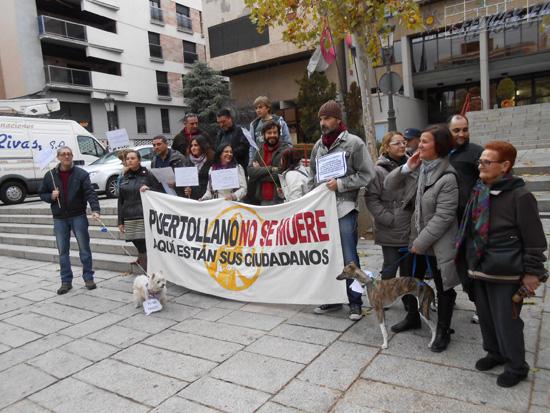 puerto_plataforma_perros03
