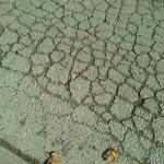 Asfaltado de la calle Orellana