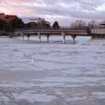 Como una patena: El lago del Parque del Pilar de Ciudad Real ya está libre de lodos