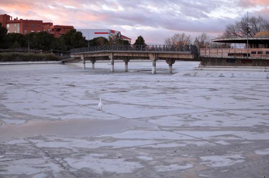 lago-parque-del-pilar-02