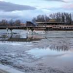 Ciudad Real: La ciénaga del Parque del Pilar