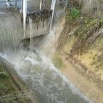 Denuncian un nuevo vertido de aguas fecales al Guadiana, muy cerca de Las Tablas de Daimiel