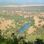 La población de Luciana acoge con «gran interés» el Banco de Tierras Municipal