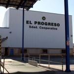 Villarrubia de los Ojos: El Progreso llegará a los 10 millones de kilos de aceituna, una cifra récord