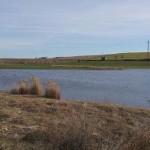 Daimiel: El agua ya se encuentra a menos de 10 metros en los pozos de captación municipales