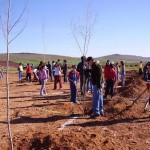 Ayuntamiento de Calzada y Consejería de Agricultura organizan un acto en el que más de 250 escolares plantarán 350 árboles