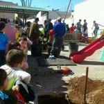 El Ayuntamiento de Daimiel justifica con informes técnicos la tala de un árbol en el Colegio Calatrava