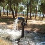 Ecologistas en Acción inicia una campaña virtual para exigir una depuradora de aguas residuales en Argamasilla de Calatrava